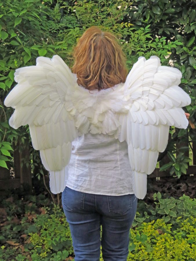 Downswept white feather angel wings back view